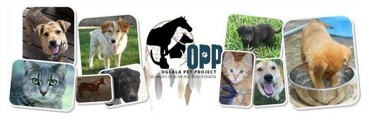opp. dogs and cats image